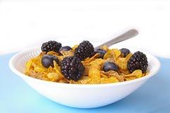 Cereal & bagas Fotografia de Stock