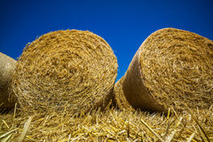 Cereal bales of straw Stock Photos
