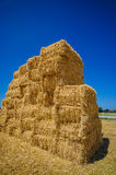 Cereal bales of straw Royalty Free Stock Photos