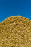 Cereal bales of straw Royalty Free Stock Images