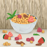 Cereal balls in bowl with raspberry, strawberry, hazelnut, brazil nut and mint leaves on wooden background. Healthy breakfast.  elements. Hand drawn vector Royalty Free Stock Photography