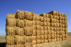 Cereal barn with square shape stack on columns Royalty Free Stock Photos