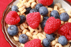 Cereal with berries Royalty Free Stock Photography