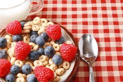Cereal with berries Royalty Free Stock Photo