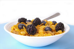 Cereal & Berries Stock Photography