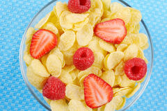 Cereal with berries Royalty Free Stock Image