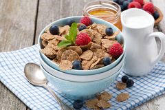 Cereal with berries, honey and milk, closeup Stock Image