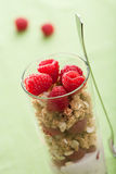 Cereal with berries and yogurt Royalty Free Stock Images