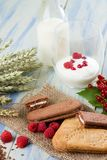 Cereal biscuits and raspberries in front of yogurt and milk Royalty Free Stock Image