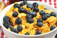 Cereal and Blueberries Royalty Free Stock Photography