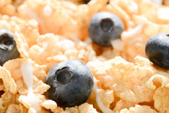 Cereal with Blueberries and Milk Royalty Free Stock Image