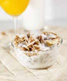 Cereal bowl Royalty Free Stock Photo