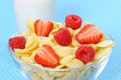 Cereal in bowl Stock Images