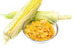 Cereal bowl of corn Royalty Free Stock Photography
