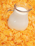 Cereal Breakfast. Corn flakes with milk fullframe Royalty Free Stock Photos