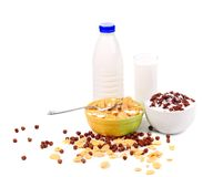 Cereal breakfast for kids. Royalty Free Stock Photo