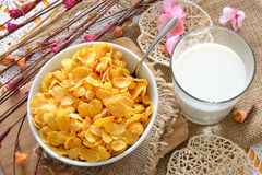 Cereal for breakfast Royalty Free Stock Photo