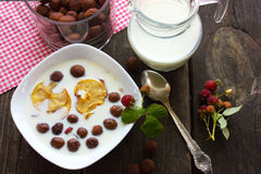 Cereal, café da manhã, bolas do chocolate com leite Imagem de Stock Royalty Free