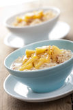 Cereal with caramelized apple Royalty Free Stock Image