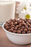 Cereal chocolate balls Stock Images