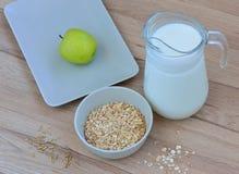 Cereal com leite Imagens de Stock Royalty Free