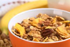 Cereal com microplaquetas e porcas da banana Fotos de Stock Royalty Free