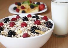 Cereal con la leche para el desayuno Foto de archivo libre de regalías