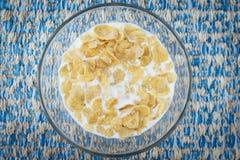 Cereal con leche Imagen de archivo