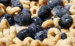 Cereal con los arándanos fotos de archivo