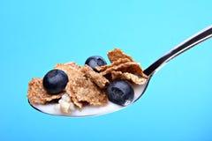 Cereal con los arándanos en la cuchara foto de archivo libre de regalías
