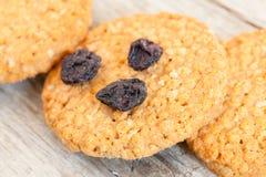 Cereal Cookies Closeup Stock Photography