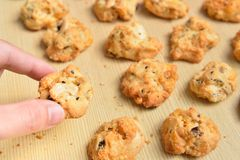 Cereal cookies on a wooden panel Royalty Free Stock Photography