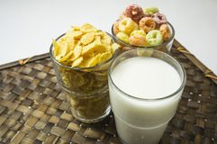 Cereal cornflakes milk breakfast meal drink bowl concept Stock Photos