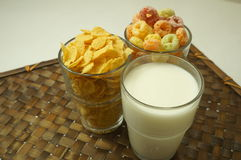 Cereal cornflakes milk breakfast meal drink bowl concept Royalty Free Stock Images