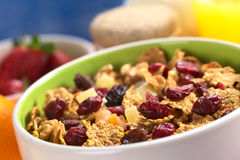 Cereal with Cranberries Stock Photos