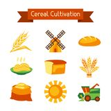 Cereal cultivation and farming icon set Royalty Free Stock Images