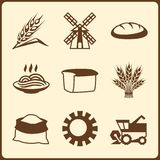 Cereal cultivation and farming icon set Royalty Free Stock Image