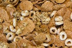 Cereal da aveia e do trigo Fotos de Stock Royalty Free