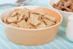 Cereal da canela Imagens de Stock