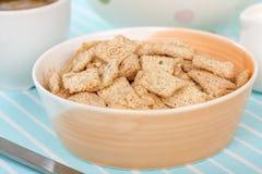Cereal da canela Foto de Stock Royalty Free