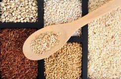 Cereal da grão imagem de stock