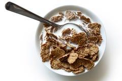 Cereal de café da manhã do farelo de trigo na bacia Fotos de Stock Royalty Free
