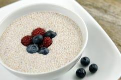 Cereal de Chia Foto de archivo libre de regalías