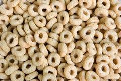 Cereal de desayuno tostado de la avena Foto de archivo libre de regalías