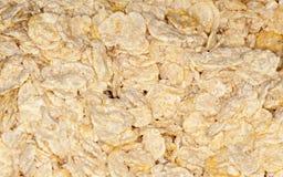 Cereal de la escama Foto de archivo libre de regalías