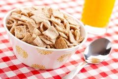 Cereal del cinamomo en tazón de fuente Imagenes de archivo