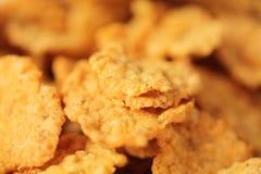 Cereal del maíz Imagen de archivo libre de regalías