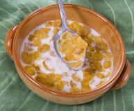 Cereal del maíz con leche foto de archivo libre de regalías