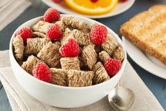 Cereal destrozado trigo integral sano Imagen de archivo libre de regalías