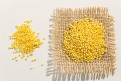 Cereal do painço de Proso Feche acima das grões espalhadas sobre o whit fotos de stock royalty free